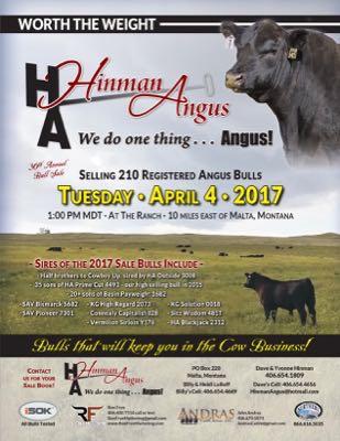 30th Annual Bull Sale