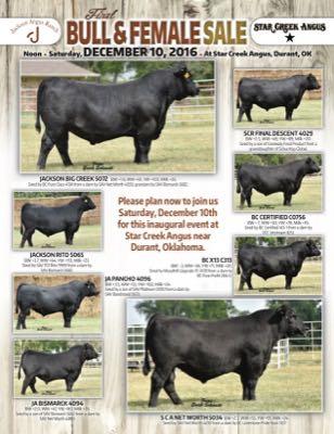 Inaugural Bull & Female Sale