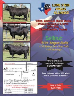 16th Annual Bull Sale