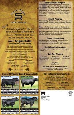 11th Annual Bull & Heifer Sale