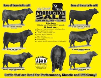 43rd Annual Production Sale