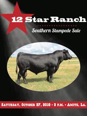 12 Star Ranch