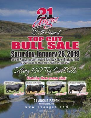 21 Angus Annual Top Cut Bull Sale