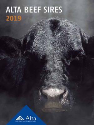 Alta Genetics, Inc. 2019 Beef Directory