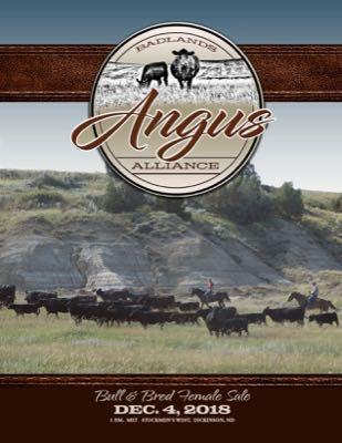 Badlands Angus Alliance