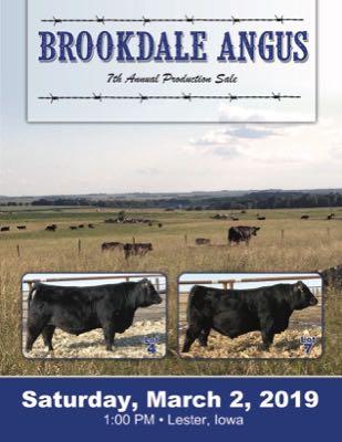 Brookdale Angus