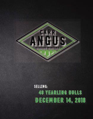 Carr Angus