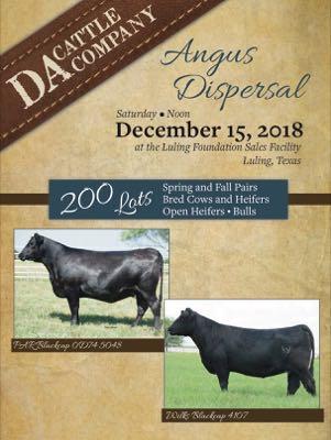 DA Cattle Company