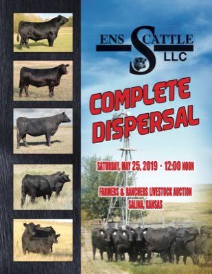 ENS Cattle Co.