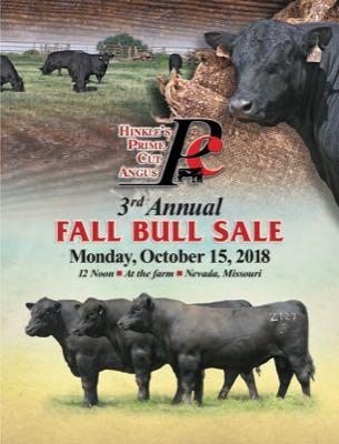 Fall 2018 Sale Book cover