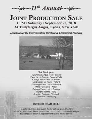 Joint Production Sale