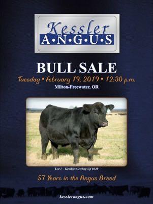 Kessler Angus Ranch
