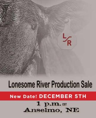 Lonesome River Ranch