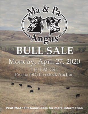 Ma and Pa Angus Bull Sale 2020