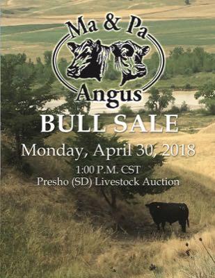 Ma and Pa Angus Bull Sale 2018