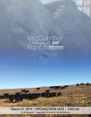 McCumber Angus Ranch