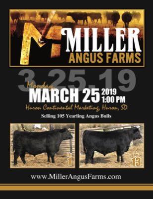 Miller Angus Farms