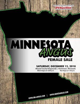 Minnesota Angus Ass'n