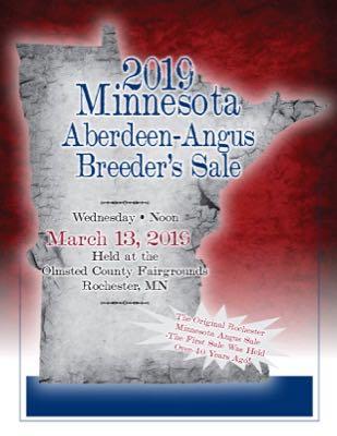 Minnesota Angus Breeders