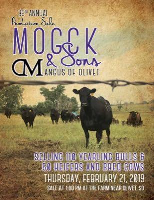 Mogck & Sons Angus