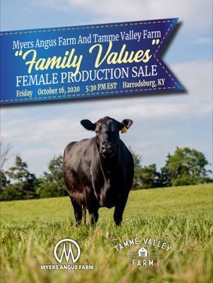 Sale Book thumbnail