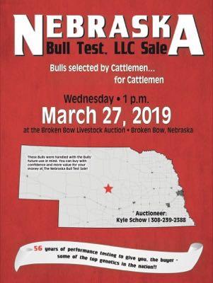 Nebraska Bull Test