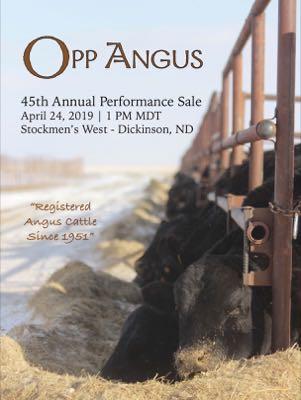 Opp Angus Ranch