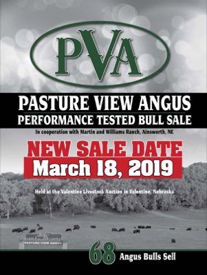 Pasture View Angus