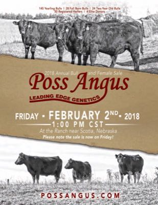 Leading Edge Genetics Bull and Female Sale