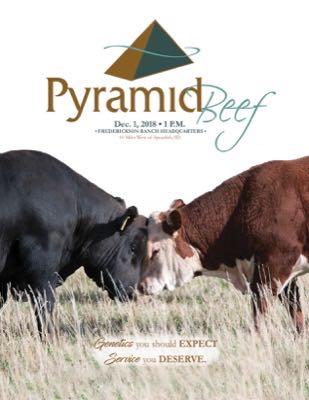Pyramid Beef