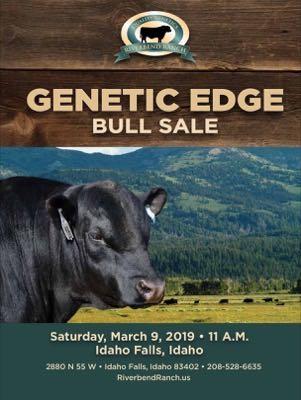 Genetic Edge Bull Sale Ad
