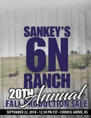 Sankey's 6N Ranch