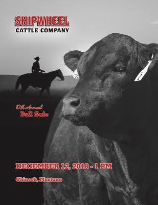 Shipwheel Cattle Co.