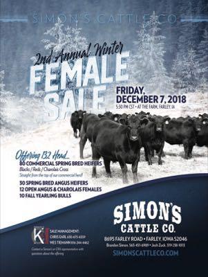 Simon's Cattle Co.