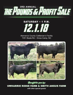 Pounds & Profit Sale
