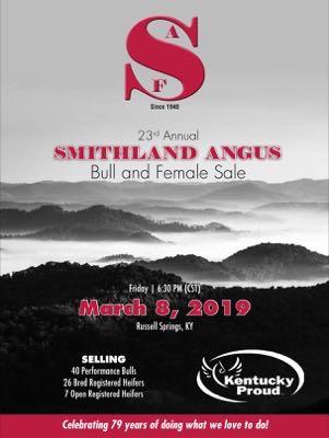 Smithland Angus