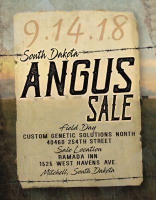SD Angus