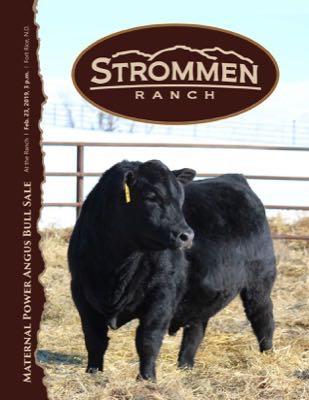 Strommen Ranch