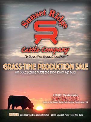 Sunset Ridge Cattle Co.