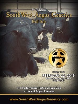 Southwest Angus Genetics