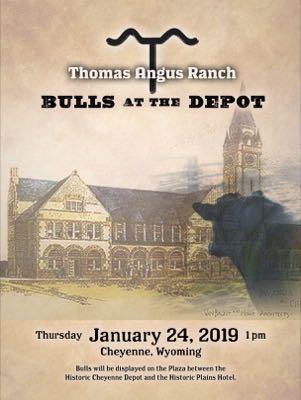 Wyoming Bull Sale