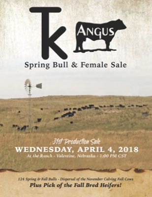 TK Angus sale book 2017