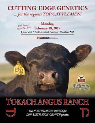 Tokach Angus Ranch