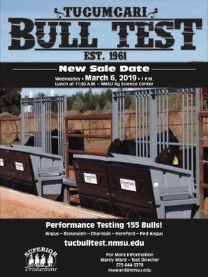 Tucumcari Bull Test