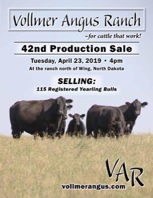 Vollmer Angus Ranch