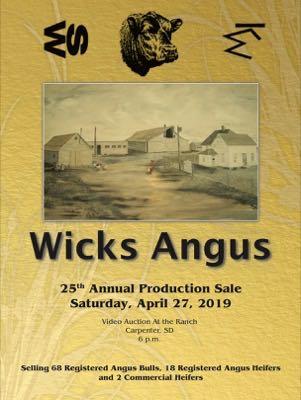 Wicks Angus